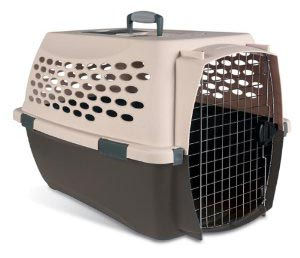 Don't Use a Crate to Punish Your Dog